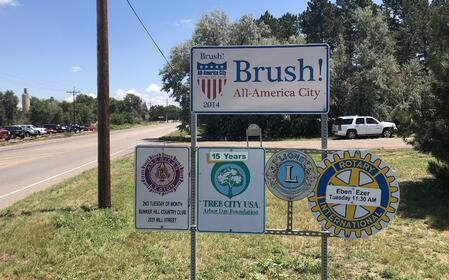 Community of Brush